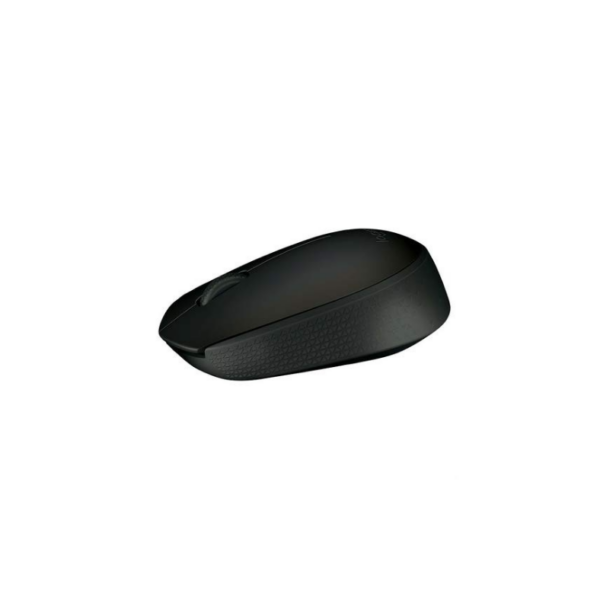Wireless Mouse M170