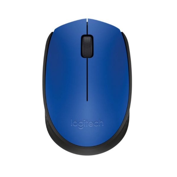 WIRELESS MOUSE M171